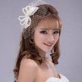 Bowknot Crystal Pearl Gauze Bridal Fascinator Bride Wedding Dress Prom Face Veils Hair Comb Accessories