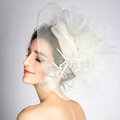 European Gauze Bridal Fascinator Hair Accessories Bride Wedding Dress Prom Large Hat Face Veils