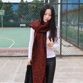 Pretty Leopard Print Scarves Wrap Women Winter Warm Cashmere Panties 195*70CM - Red