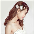 Alloy Leaves Crystal Flower Bride Hair Combs Women Wedding Hair Accessories - White